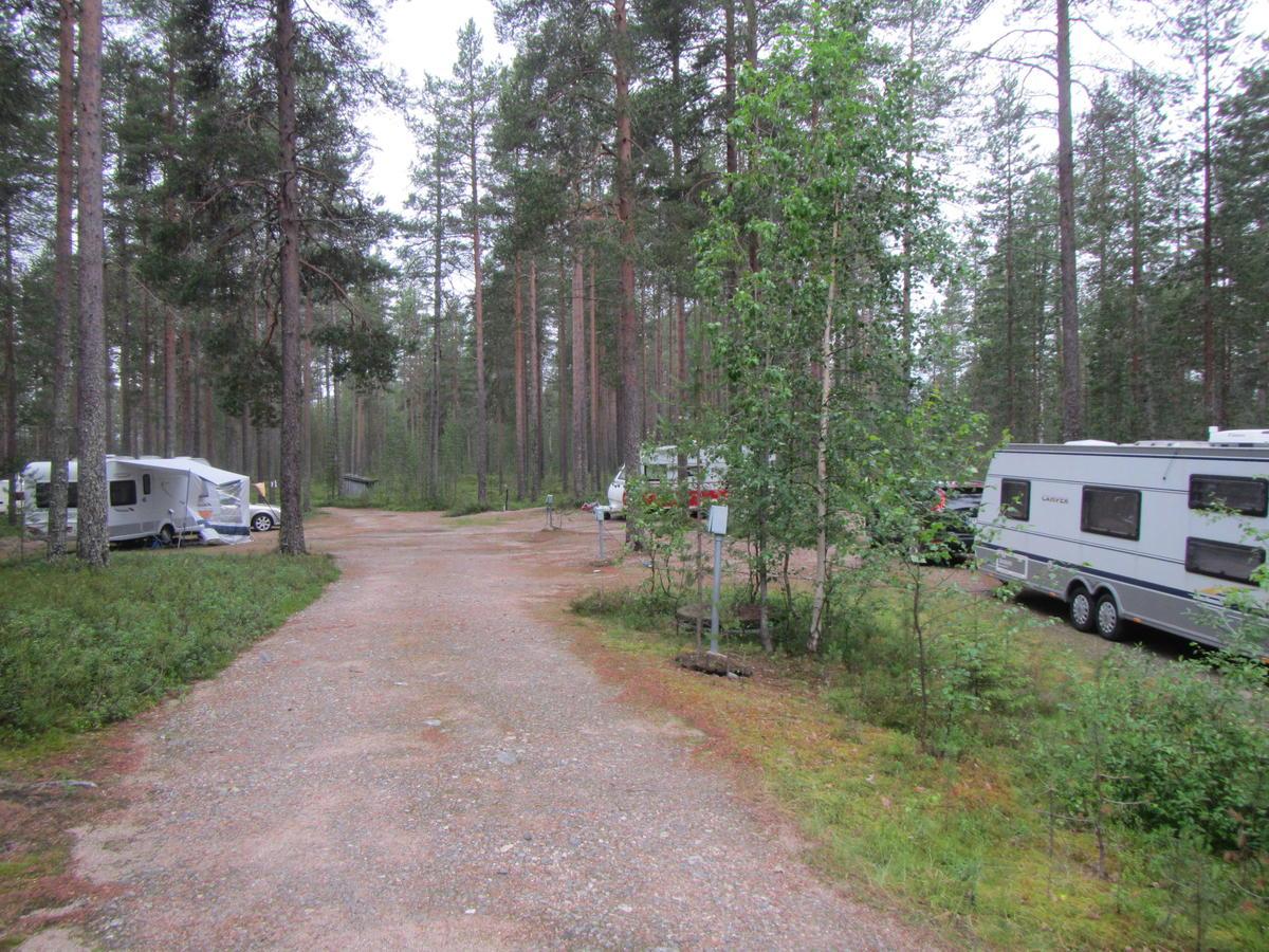 Shit camping