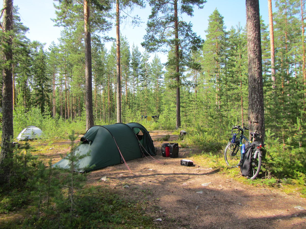 Forest/camping