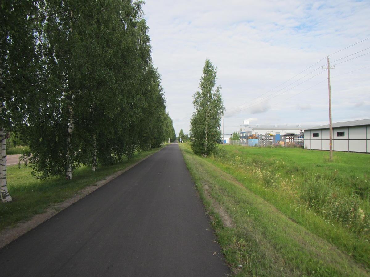 Endless bike road