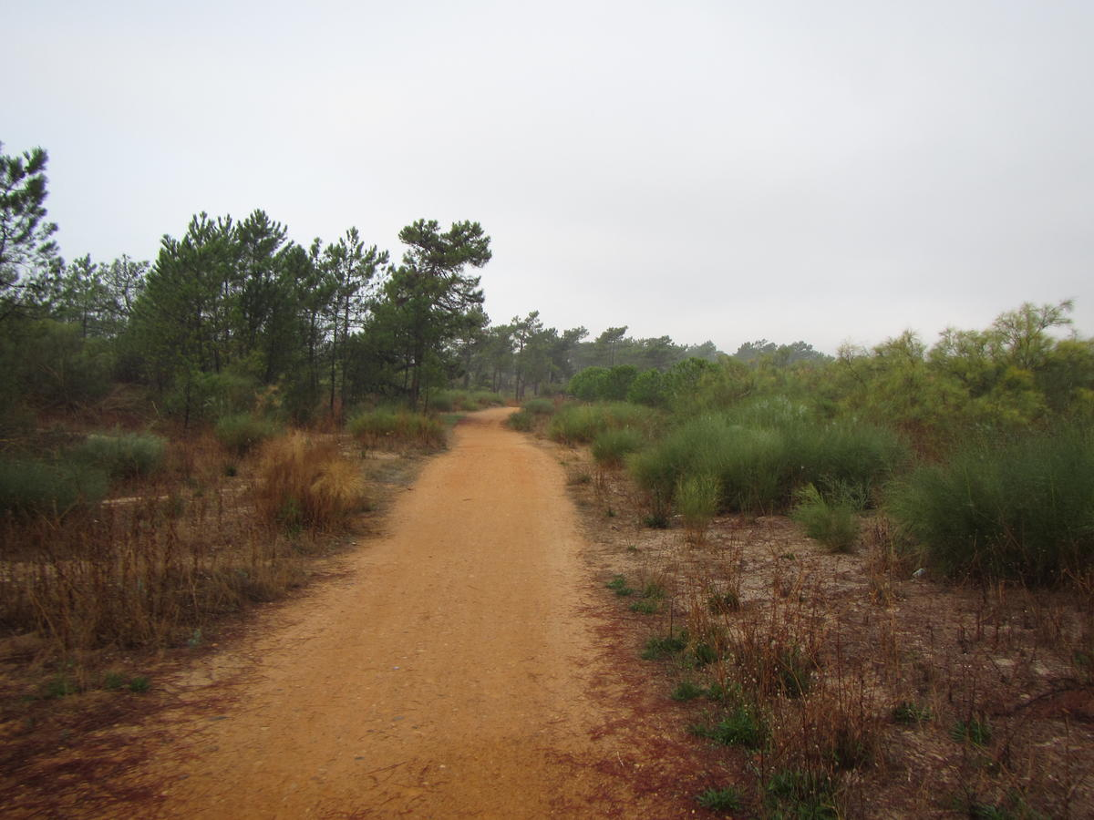 Algarve Ecovia