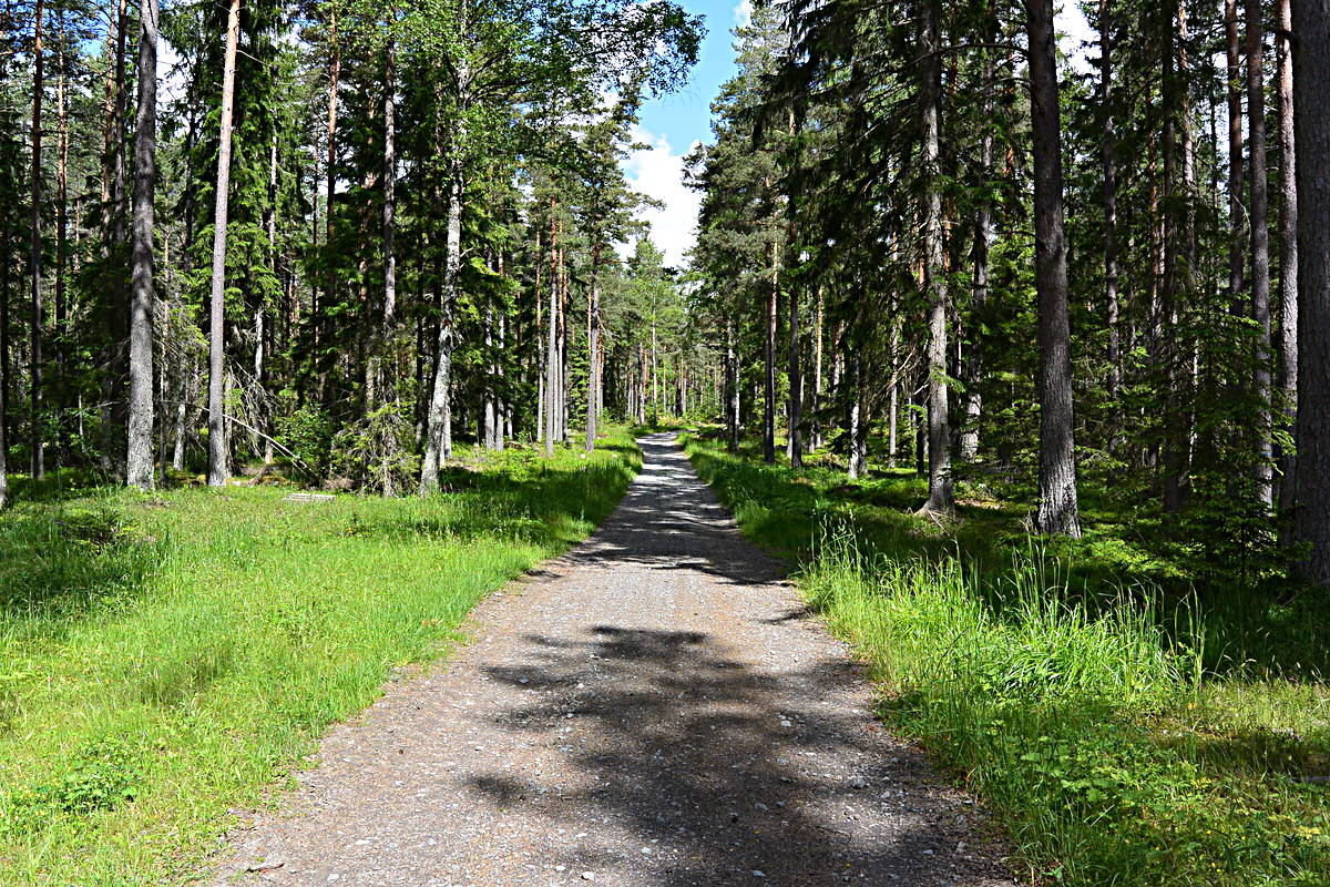 North of Arlanda